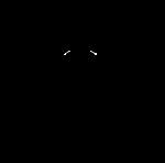 Officiall TeamFireNinja Logo