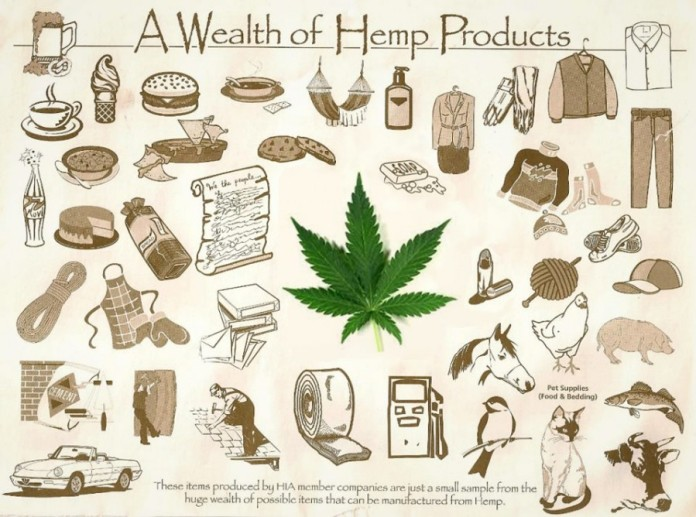 Image result for hemp product images